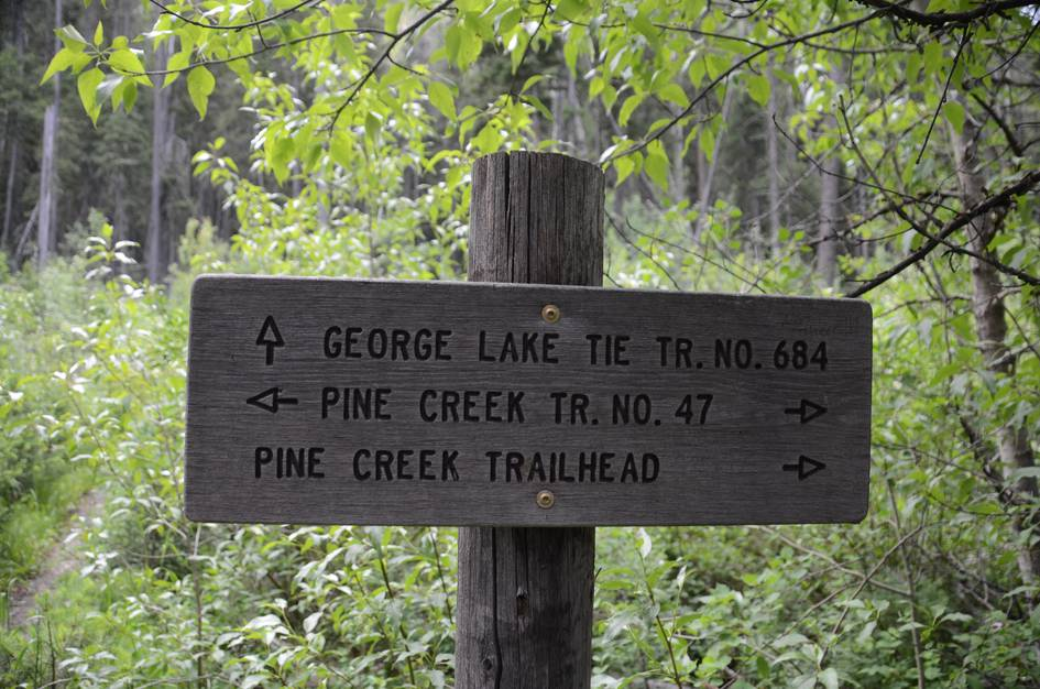 Pinecreek trail sign